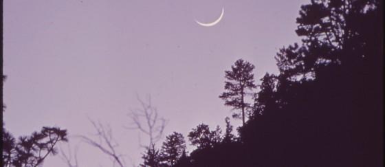 Ramadan 2015 – début du jeûne